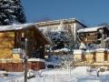 Garten_Winter